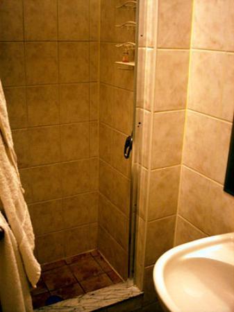 The Amsterdam Inn: Room 401 shower-- clean