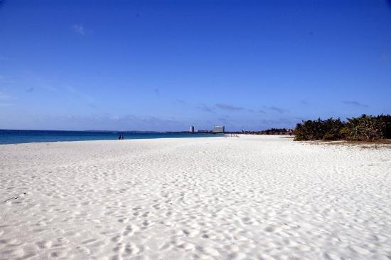 Palm/Eagle Beach, Aruba : Eagle Beach