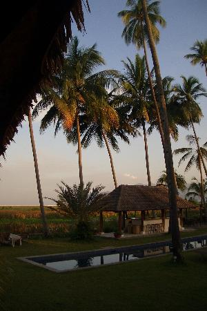 Bon Ton Resort : View from our House