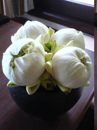 Trisara: Villa Flowers