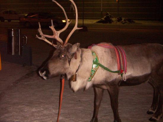 Rantasipi Pohjanhovi: Santa visits the hotel
