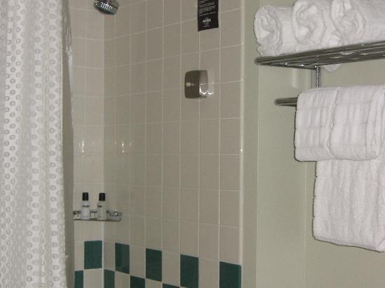 Hard Rock Hotel at Universal Orlando: bathroom