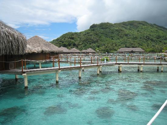Huahine, Polinesia Francesa: Snorkling & DOWB