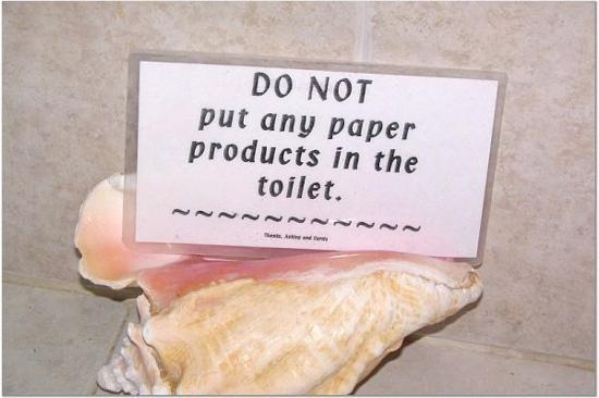 Villa La Bella: No paper in toilet