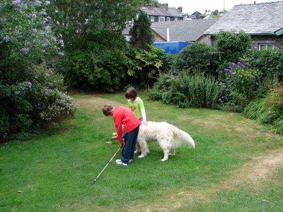 The Elim Lodge Dog!