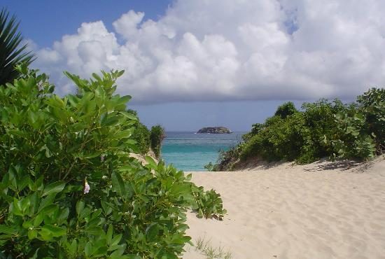 Сент-Бартельми: Anse de Grand Saline, St Barth