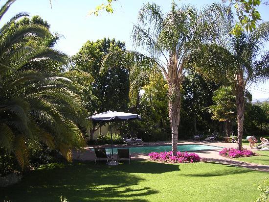 Hlangana Lodge: Garden and pool