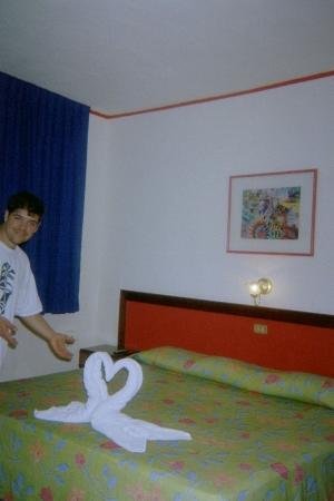 Hotel Agave Azul: Swan towel at Palma Dorada