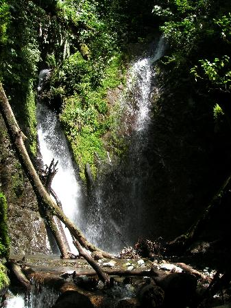 Playa Nicuesa Rainforest Lodge: Twin waterfall, Piedras Blancas NP
