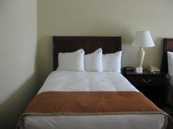 Sturbridge Host Hotel & Conference Center Photo