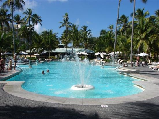 La piscine picture of hotel riu palace macao punta cana for La piscine review