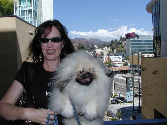 West Hollywood, CA: shopping at hollywood and highland