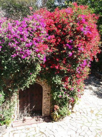 La Casa De Los Espiritus Alegres : the gorgeous museo next door to La Casa