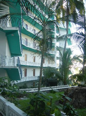 Caleta Beach Resort : hotel garden