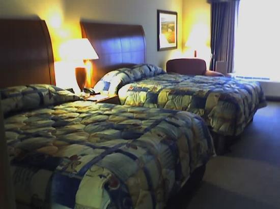 Foto de Hilton Garden Inn Fredericksburg