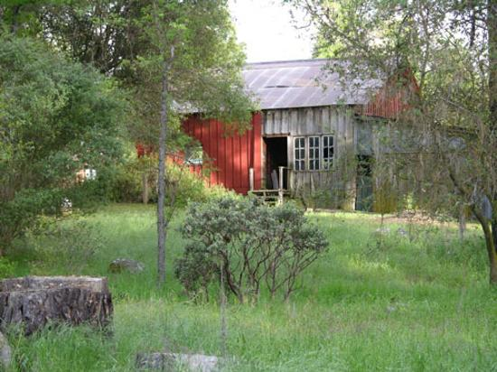 Meadow Creek Ranch Bed and Breakfast Inn: back of barn from meadow walking path