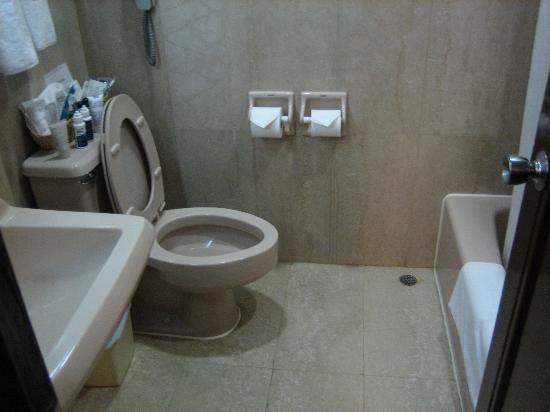 Shamrock Hotel: Bathroom