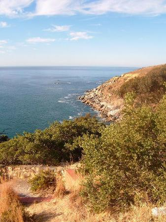 Le Cap, Afrique du Sud : on the way to campsbay