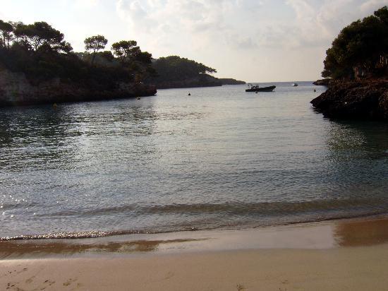 Aparthotel Ferrera Blanca: first to the beach again