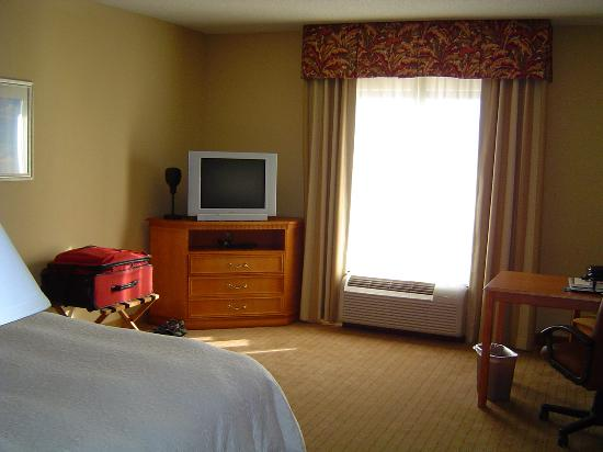 Hampton Inn & Suites Tampa East (Casino Area): TV area and outer wall