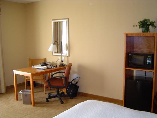 Hampton Inn & Suites Tampa East (Casino Area): Desk area