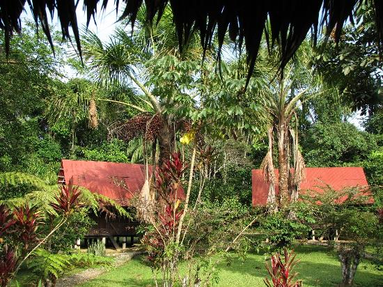 Manu National Park, เปรู: Gardens and lodge buildings
