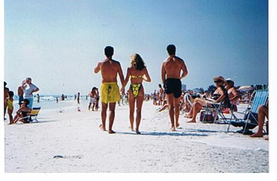 Crescent Beach Siesta Key Fl