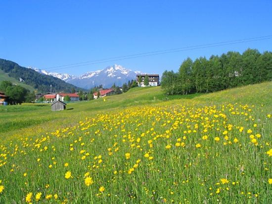 Seefeld in Tirol, Oostenrijk: Walk from Hotel Alpina to the town