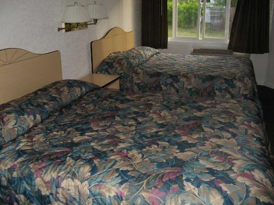 Rodeway Inn West Sacramento: Zimmer