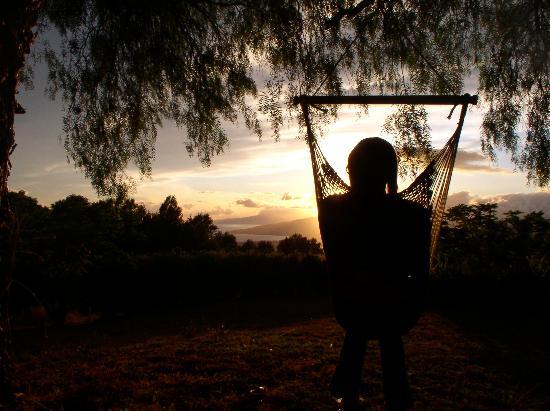 Kula View: Sitting in the hammock chair in Susan's yard