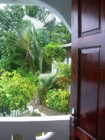Calypha Guesthouse : Veiw from the bed