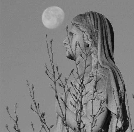 Oakland Cemetery: Moon Profile