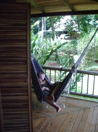 Bosque del Cabo Rainforest Lodge: Hammock