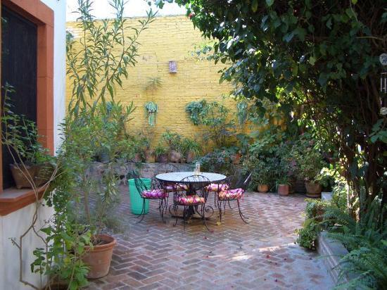 Casita de las Flores: Avacado Tree Right Outside Room Door!!