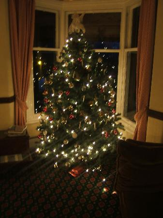 Middle Ruddings Country Inn: hotel christmas tree