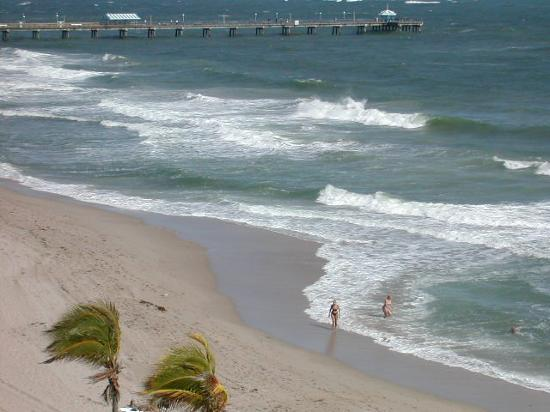 Lauderdale by the Sea, Floride : Surfs up!