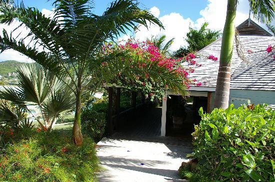 Cocobay Resort: Reception