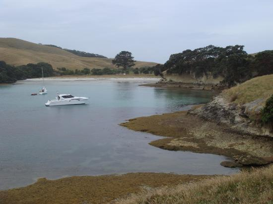 Coromandel, Nieuw-Zeeland: Parapara Bay, Gt Mercury Is.-ideal cove to shelter in, great walks over the island