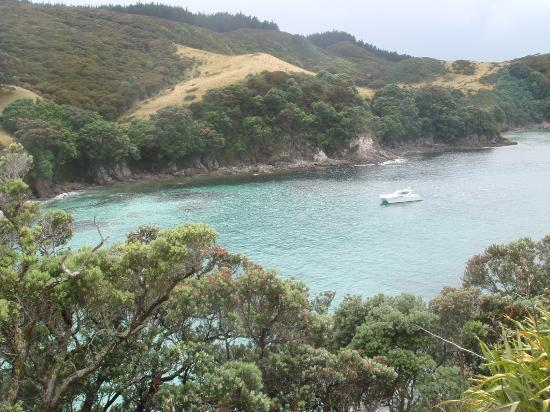 Coromandel, New Zealand: Sheep Bay- taking shelter from the ocean swell