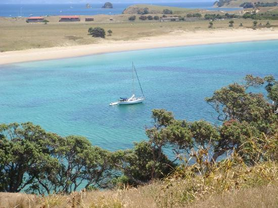 Coromandel, Nowa Zelandia: Coralie Bay- White Beach at the top of the photo