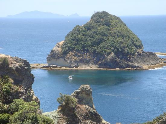 Coromandel, Nya Zeeland: Coralie Bay- Island at the entrance