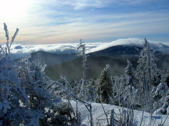 Killington, VT : Jan. 2, View from the top