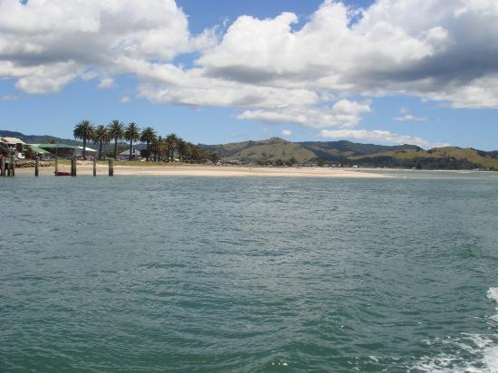 Whitianga, Nueva Zelanda: Buffalo Beach- great for swimming and surfcasting