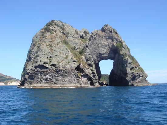 Whitianga, Nouvelle-Zélande : Needle Rock, Mercury Bay
