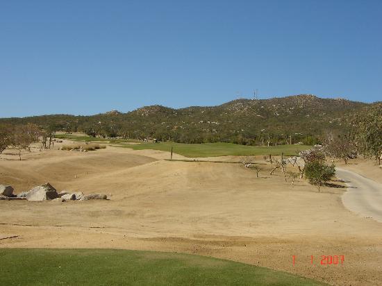 Desert Course at Cabo del Sol: #1 dogleg left par 4. Nice starting hole.