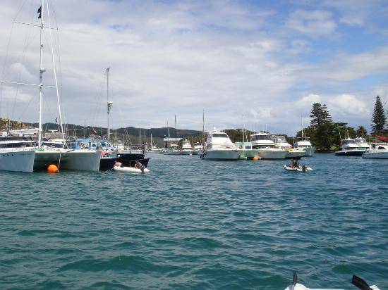 Mercury Bay: Boats arriving and rafting up for the New Years Eve Party on the island