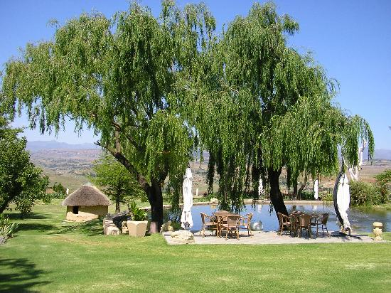 Caledon Gardens: Sip a cool drink lazing about here....