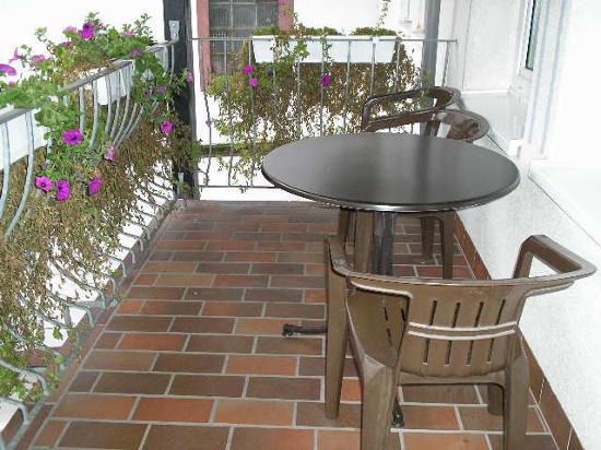 View from veranda: Halfenhof