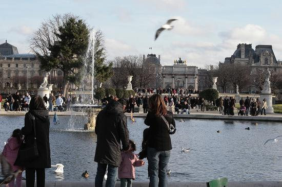 Hotel Le A: Feeding the ducks