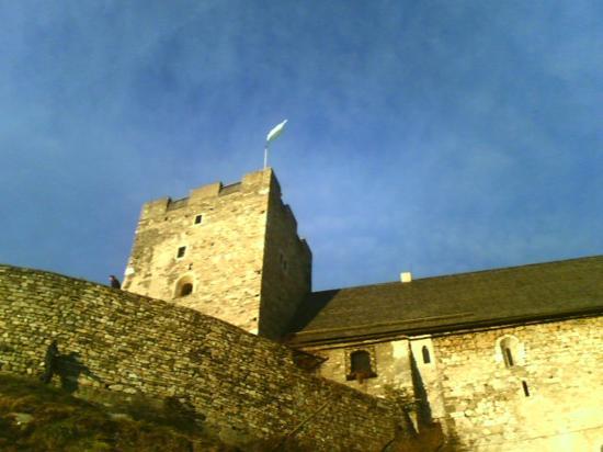 Burgruine Gösting : The keep
